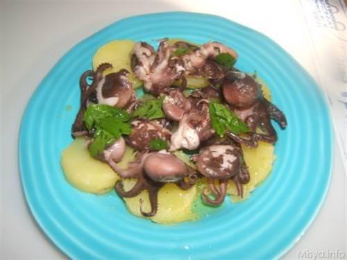 Moscardini in bianco ricetta moscardini in bianco di misya for Cucinare moscardini