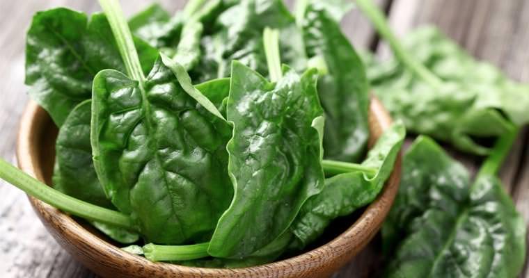 Risultati immagini per spinaci