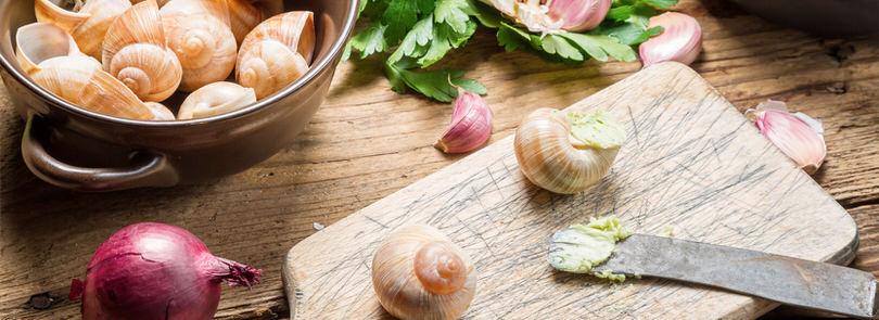 Come cucinare le lumache for Cucinare le lumache