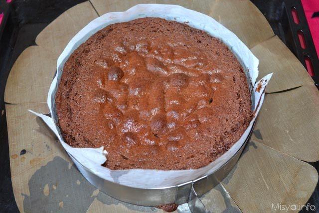 sponge cake al cacao 10