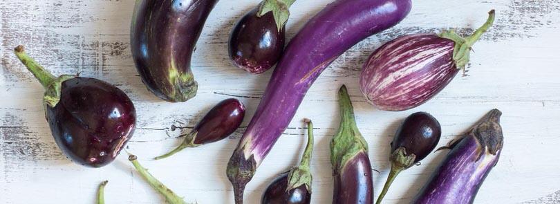 Ricette di cucina di misya ricette facili con foto - Cucinare olive appena raccolte ...
