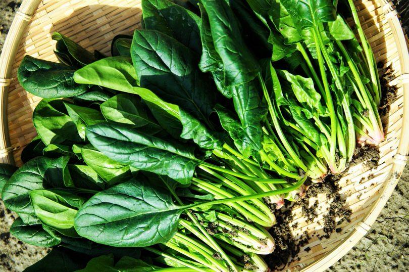 Come cucinare gli spinaci - Come cucinare gli spatzli ...