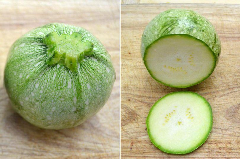 1 zucchine tonde