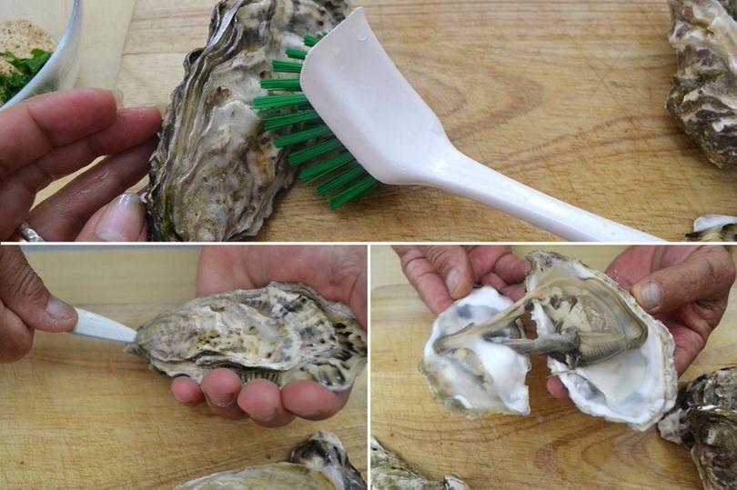 aprire le ostriche