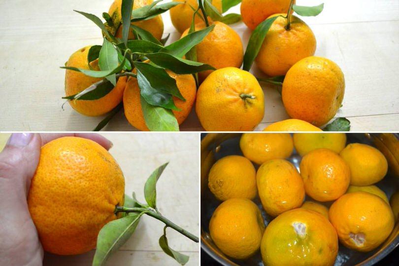 1-pulire-mandarini
