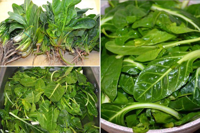 1 pulire verdure