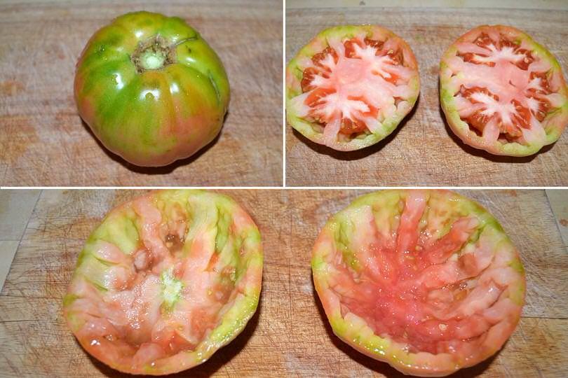 1 svuotare pomodori